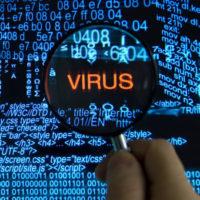 Virus <span>removal</span>